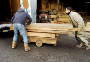 Furniture maker loading the van with oak planks from the sawmill