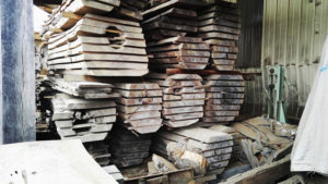 Oak trees planked and stacked air-drying